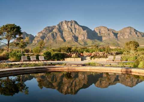 Boschendal Vineyard, Franschhoek, South Africa